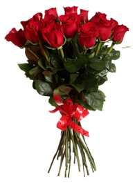 13 Red Roses